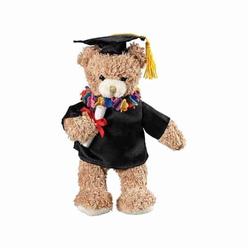 Graduation Bear, Gift Items, Gifts, Teddy Bear, Prestige Medical, Teal, Plush, Bear